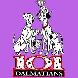 101 Dalmatíncov, 480 * 700