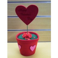 Valentínsky kvet v tvare srdca