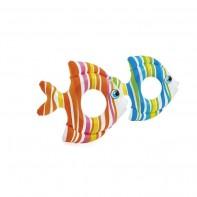 KOLESO pásikavé - ryba 83*81CM