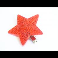 Hviezda, C-4-07184