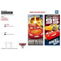 Osuška CARS - Race to win