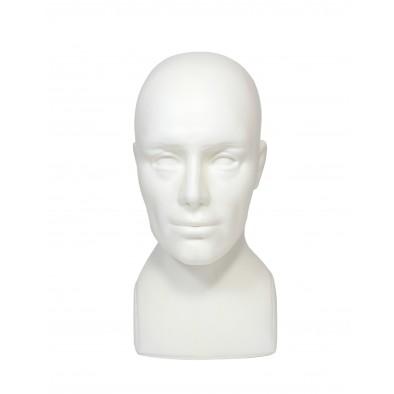 Pánska hlava s krkom
