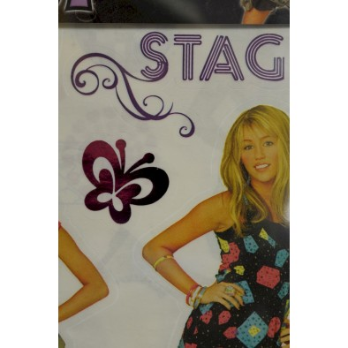Hannah Montana - dekorácia na stenu, C-4-62343