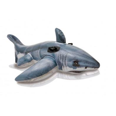 Nafukovačka žralok
